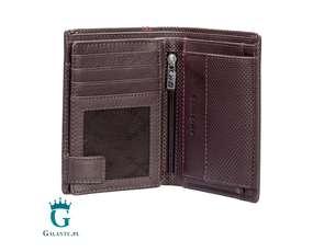 Elegancki portfel 13A-282